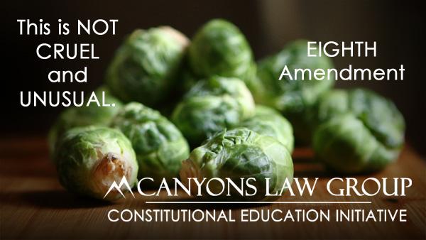 Eighth Amendment - Cruel and Unusual Punishment
